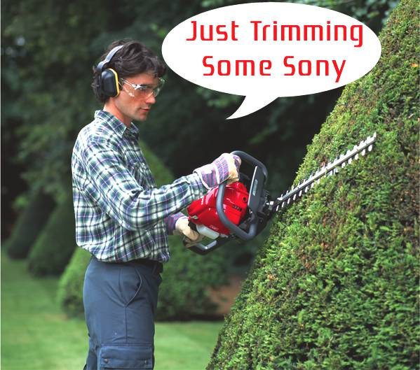 Trimming_Sony