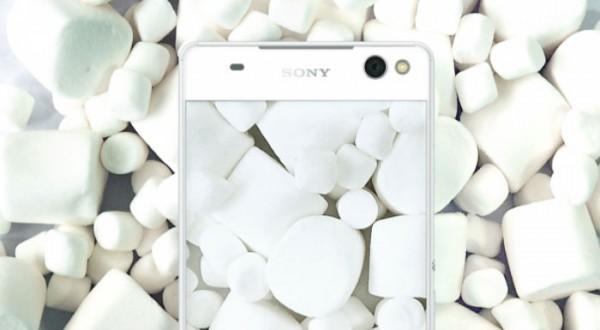 Sony Marshmallow Concept