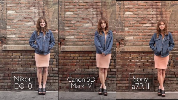 camera-comparison-nikon-d810-canon-5d-mark-iv-sony-a7r-ii